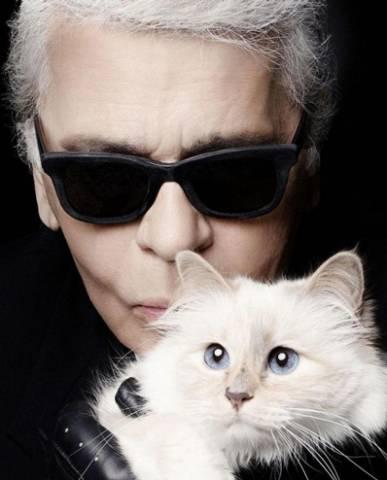 Mối lương duyên kì lạ giữa Karl Lagerfeld và chú mèo Choupette